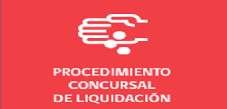 Procedimiento Concursal de Reorganización Judicial